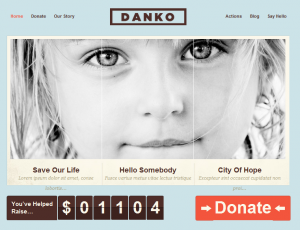danko WordPress theme - donations